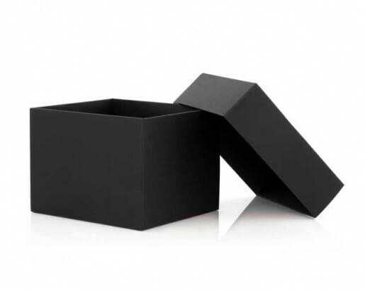 Blackbox Mindlessness