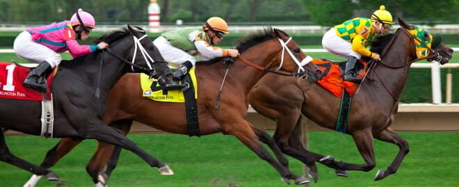 Learn from Horse Racing