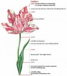Tulipmania: Human Behavior Stays the Same. Trend Following Takes Advantage.