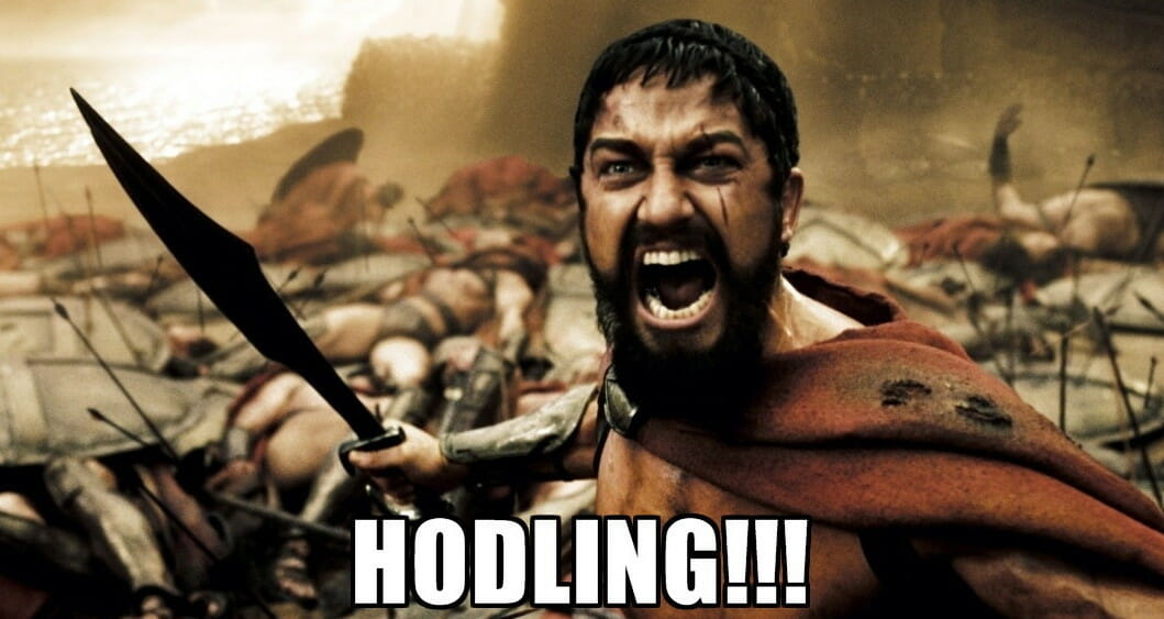 Holding or Hodling?